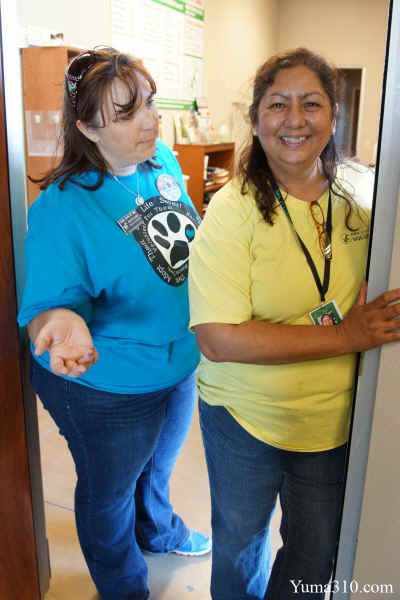 Annette Lagunas (left), HSOY Executive Director, and Nisa Sutton (right), Feline Friends Chairwoman tour us through the Feral Cat program at the Humane Society of Yuma on Saturday's Fall Festival.