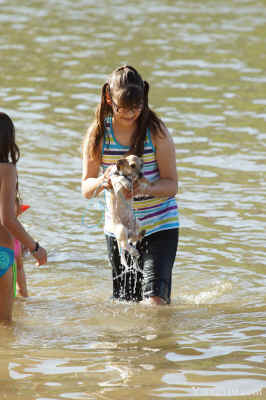 Dripping Wet Puppy pulled from Colorado River