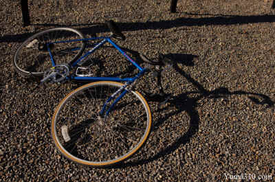 A lone Schwinn Traveler cycle rests with it's shadow cast from sunlight.
